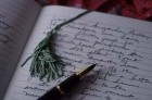 Guestbook - Leave your comment - Villa Anita Guesthouse